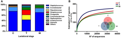 Bacterial diversity of human breast milk. (A) Shows the proportion of each bacterial genera in the three lactational-stages, as inferred by PCR amplification and pyrosequencing of the 16S rRNA gene. (B) Shows the rarefaction curves of the three groups, relating the sequencing effort with an estimate of the number of bacterial species, as inferred by the number of OTUs. An OTU is a cluster of 16SrRNA sequences that were >95% identical, a conservative estimate for the boundary between species, established at 97% for full-length 16S rRNA sequences. The inlet Venn's diagram shows the number of bacterial genera shared between and unique to the three sample types, excluding bacterial genera present at <1% proportion. Seven genera are shared at the three breastfeeding stages: Finegoldia, Streptococcus, Corynebacterium, Staphylococcus, Acinetobacter, Peptoniphilus, and Pseudomonas. C, colostrum samples (n = 11); T, transition samples (n = 11); M, mature samples (n = 8).