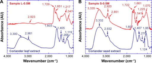 Fourier transform infrared (FTIR) spectra of (A) coriander leaf extract and sample L-0.5M and (B) coriander seed extract and sample S-0.5M.Note: Numbers indicate the position of vibrational bands.Abbreviations: L-0.5M, final colloid obtained using coriander leaf extract and 0.5 M AgNO3; S-0.5M, sample obtained using extracts of coriander seeds and 0.5 M AgNO3 solution.