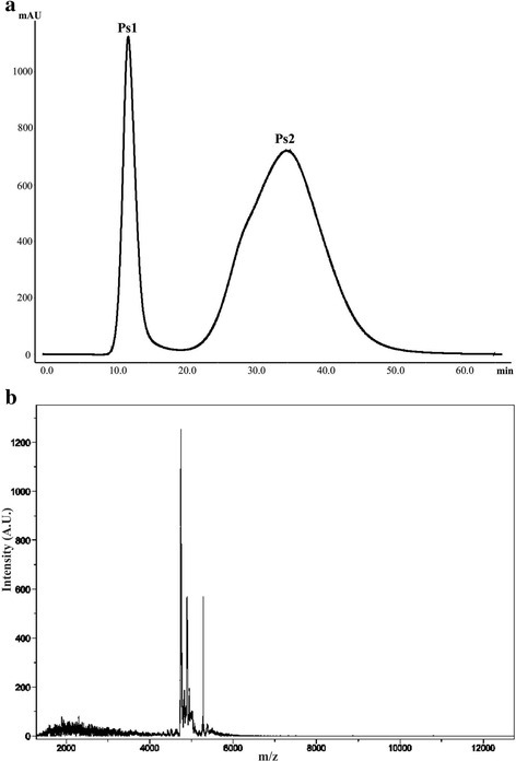 aP. strigosa extract elution profile obtained by FPLC on a Sephadex G-50 column at 280 nm. The column was equilibrated and eluted with 1.6 mM acetic acid at 1 mL/min. b MALDI-TOF of the second fraction (Ps2) after filtration with ultra-centrifugation filters with 10 K cut-off