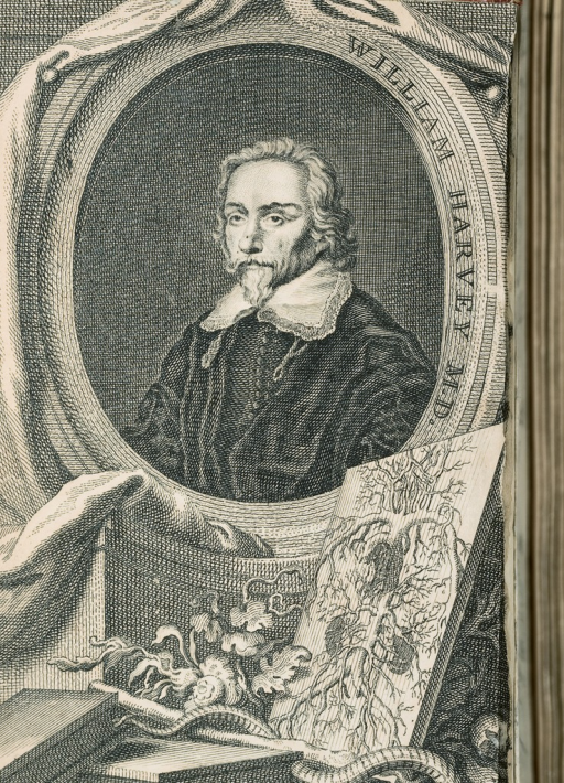 <p>Image from the frontispiece of The anatomical exercises of Dr. William Harvey ... shows a drawing of human circulatory system on a table with books, vines, and an Asclepius staff, propped up against a portrait of William Harvey.</p>