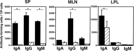 Enumeration of Ab-producing cells in systemic and mucosal lymphoid tissues from mice treated with anti–IL-4 mAb (hatched bars) or mock Ab (black bars). Mononuclear cells isolated from SP, MLNs, and colonic LP (LPL) of TCR-α−/− mice treated with anti–IL-4 mAb or rat IgG2b (mock Ab) were examined by isotype-specific ELISPOT. Data represent the mean ± SEM from five mice per group of three separate experiments. *Significantly different from each other (P < 0.01) by Student's t test.