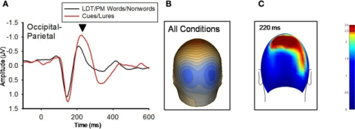 (A) Grand-averaged ERP waveforms for LDT/PM words/nonwords and Cues/Lures for the 220 ms component (marked with black arrow).  Occipital-parietal ERP waveforms were derived by averaging sensors from the significant cluster that resulted from the planned contrast. Negative is plotted up. (B) A topographical voltage distribution averaged within time windows centered on the peak latency of the 220 ms component. Positive isopotential lines are in red, negative isopotential lines are in blue. Isopotential line scale is: 0.64 μV/step. Due to similarities in topographic distributions across conditions, they are averaged and presented as one voltage topography. (C) A plot of t-values (absolute value taken) over the head surface indicates the sensor clusters for which there were significant effects between LDT/PM-words versus cues and LDT/PM-nonwords versus lures at 220 ms post-stimulus. The two effects are presented together due to the high similarity between the two comparisons, suggesting red PM-items were preferentially processed at this time point. The critical t-value (t = 2.3281) is marked on the scale.