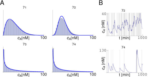 Distributions and dynamics of the signaling molecule in a diffusionless system. Panel A: Distributions of cA at steady-state for different sets of parameters (, ) as indicated in Figure 2B. In all cases  = 0. The histogram obtained in simulations (blue bars) compares well with the distribution from the analytical calculations (blue line). Yet, deviations are observed due to intrinsic noise (see text). Panel B: The dynamics of the autoinducer show different behaviors depending on the region of the parameters phase space (see Figure 2). Two typical trajectories are shown with a grey-shaded background indicating the presence of a mRNA molecule in the cell.