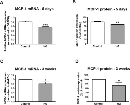 Sustained and repetitive HQ-induced oxidative injury decreases on MCP-1 expression in human RPE cells.Confluent serum-starved ARPE-19 cells were treated with (A, B) 10 µM HQ every 24 hours for 5 consecutive days or (C, D) 50 µM HQ every 4 days for 24 hours for 3 consecutive weeks in phenol red-free 0.1% FBS medium. Total RNA was extracted to assess MCP-1 mRNA expression by real-time PCR (A, C). GAPDH was used as internal control. Supernatants were collected to assess MCP-1 protein concentration by ELISA (B, D). Data are mean± SE and represent the average results of 3 independent experiments run in duplicate. * is p<0.05, ** is p<0.01 and *** is p<0.001 versus control.