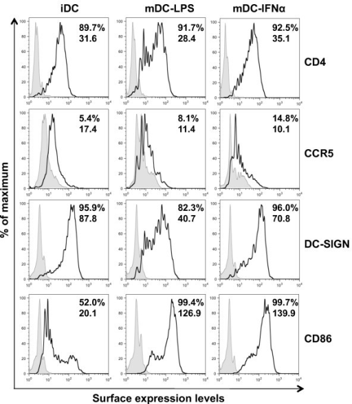 IFNα induces DC maturation but does not alter the expression of HIV-1 receptors. iDC, mDC-LPS and mDC-IFNα were stained for cell surface expression of CD4, CCR5, DC-SIGN and CD86. On each histogram, the filled peaks are the controls of isotype or secondary antibody alone and the black peaks represent the staining of specific markers. Top and bottom numbers shown in plots are % positive and the geometric mean values of fluorescence intensity, respectively. Results shown are from DCs from a single donor representative of two independent experiments on DCs from different donors.