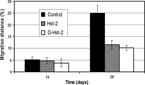 Graphic showing the results of the migration experiments of NP in a 1.5% collagen matrix with and without the addition of Hst-2 as a chemo attractant. The results with the negative enantiomer DHst-2 are also shown. The samples with Hst2 and Dhst-2 reveal a significantly decreased migration after 28 days