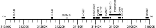 Location of human endogenous retrovirus K (HERV-K) sequence adjacent to HLA-C within the MHC region on chromosome 6The PSORS1 susceptibility locus containing one or more psoriasis risk variants has been mapped in various studies to the region between HLA-B and HCG22. Cen: centromeric; Tel: telomeric. Scale at bottom is human reference sequence assembly GRCh37/hg19.