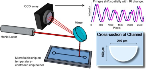 BSIexperimental setup. The laser is directed onto the microfluidicchip by a mirror that also serves to direct the interference fringeson the detector. As shown, the channel in the chip has a near semicircularcross section. When the fluid RI changes in the channel the interferencefringes shift spatially.