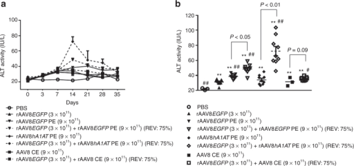 Exacerbate liver transaminitis in BALB/c mice by increased ratios of empty adeno-associated virus (AAV) particles in rAAV8EGFP dosing formulations. Mouse sera were collected at different time points after vector perfusion. The serum alanine aminotransferase (ALT) levels were detected by ALT detection kits. The time courses of (a) the ALT levels and (b) comparison of ALT levels of different study groups are presented. Analysis of variance was used for comparing the experimental results with those from the groups with phosphate-buffered saline (PBS) or rAAV8 or AAV8 empty particles alone and was determined to be statistically significant. *P < 0.05, **P < 0.01 versus PBS; #P < 0.05, ##P < 0.01 versus rAAVEGFP alone. Finally, the groups of rAAV8EGFP vector mixed with different AAV8 empty particles were compared with the corresponding AAV8 empty particle alone, respectively, and the P value for each paired comparison is presented. rAAV, recombinant AAV.
