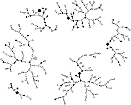 Network diagram of PWID recruitment chain referral in Nairobi, 2011 (N = 275), by HIV serostatus and lifetime sharing of needle or syringe. Larger shapes depict seed participants (n = 6); smaller shapes are recruited respondents (n = 269). Gray HIV-seronegative respondents (n = 212; 1 seeds). Black HIV-seropositive respondents (n = 57; 5 seeds). Square Ever receptive syringe sharing (n = 151; 4 seeds). Circle Never receptive syringe sharing (n = 118; 2 seeds)