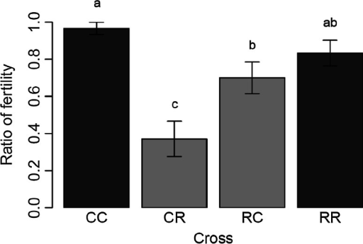 Ratio of fertility in inter-strain crosses (light grey columns) in both directions of the cross. C/R (female corn with male rice) and R/C (female rice with male corn) cross direction. The within-strain crosses (dark grey columns) C/C (female and male corn) and R/R (female and male rice). Different letter above the bars means that the ratio of fertility were significantly different (p < 0.05)
