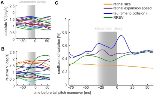 Low variation of retinal size and relative expansion velocity (RREV) of the approached perch suggests these cues matter for controlled landings on a swinging perch.We defined the tail pitch as the behavioral indicator for landing initiation (time = 0 ms). Negative time values represent the time before and positive time values the time after the downward pitch of the tail feathers. Shaded areas ranging from -30 ms to 0 ms mark the minimal time period of visuomotor delay during which visual flight control is unlikely. Absolute horizontal flight speed (A) has less variation across flights than relative horizontal flight speed (B) with respect to the moving perch. (C) The most parsimonious landing parameters are indicated by a minimum in the coefficient of variation (c.v.) across flights and birds. The retinal size (orange) and RREV (green) for the approached perch varied less that the parameter tau and the retinal expansion. Tail pitch timing was extracted individually from high-speed flight videos. n = 16, N = 5 birds.