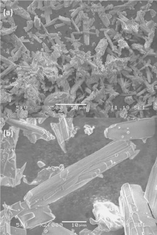 SEM images of as-made TON crystals, which are taken at (a) low magnification (Scale bar is 50 μm) and (b) high magnification (scale bar is 10 μm).