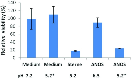 "Cytotoxic effect of Sterne and ΔNOS static culture sups. Bacteria were grown in DMEM (10 ml, 24 h, 37°C, 5% CO2) in static conditions and the culture sups were prepared. The monolayers of human small-airway lung epithelial cells (HSAECs) were exposed to the bacterial sups for 2 h and the viability of the cells was determined using Resazurin dye as described in Section ""Materials and Methods"". The final pH values of the sups and control medium are shown. Asterisks indicate the sups titrated to the pH 5.2 of Sterne sup after cultivation. The error bars indicate 95% confidence intervals of triplicate measurements."