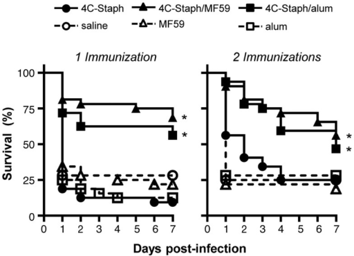 4C-Staph formulations increased the survival of mice after S. aureus infection. BALB/c mice were immunized with 4C-Staph, 4C-Staph/MF59, 4C-Staph/alum, and respective controls (PBS, MF59, and alum) once or twice 2 weeks apart, and challenged 2 weeks after the last immunization with ~5 × 108 CFU S. aureus. Animals were monitored for 7 days post-infection for health status. Graphs represent the merge of at least two separate experiments (n = 32). Statistical analyses were performed using Mantel–Cox test; survival in the groups receiving the formulated 4C-Staph vaccines were compared to their respective control. *p < 0.05.