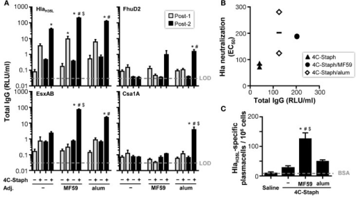 4C-Staph formulations induced antigen-specific functional antibody and antibody-secreting B cells. (A) IgG titers specific to each 4C-Staph component (HlaH35L, EsxAB, FhuD2, and Csa1A) were determined in sera of mice after one (Post-1) or two (Post-2) immunizations (n = 10–16). (B) Correlation between Hla-specific neutralization and antibody titers. (C) HlaH35L-specific antibody-secreting B cells were detected in spleen of mice 2 weeks after the second immunization (n = 4–8). Graphs show mean ± SD, and represent the merge of a least two separate experiments. Data were analyzed using one-way ANOVA and Tukey's multiple comparison test, p < 0.05, *4C-Staph formulation versus its respective formulation without 4C-Staph; #adjuvanted-4C-Staph versus 4C-Staph alone; $4C-Staph/MF59 versus 4C-Staph/alum.
