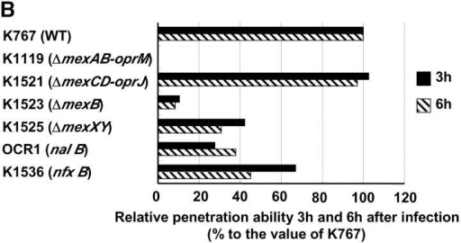 Penetration of P. aeruginosa strain K767 (WT) and its efflux mutants. Bacteria were inoculated at 3.5 × 106 CFU per well to the apical surfaces of MDCK cell monolayers. (A) The assay was performed in triplicate, and results are expressed as mean ± SD. (B) The values are expressed as percentages of values obtained with strain K767 at 3 and 6 h.