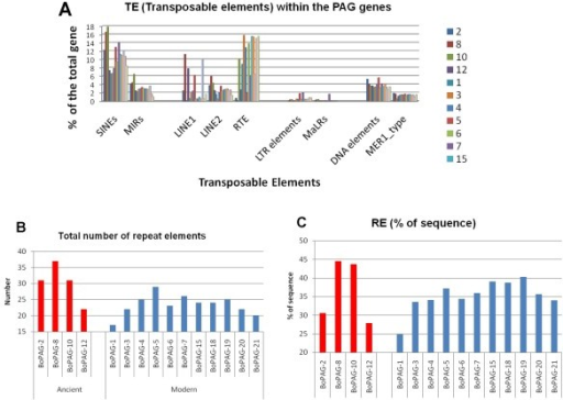 Relative distribution of non-LTR (SINE, LINE), LTR and transposable elements (TEs) within several bovine PAG genes. A. Each colored bar represents the relative distribution of the corresponding element in each boPAG gene. The TE elements were shown on the -X axis. The relative % of the sequence contributed by each element is shown on the Y-axis. The definition of the acronyms used in the figure is as follow: LTR: long terminal repeat; SINE: short interspersed element; LINE: long interspersed element; MIR: mammalian wild- interspersed repeat (sub-class of SINE); RTE: retrotransposable elements; MaLR: mammalian apparent long terminal repeat; MER: medium reiterated element. B. and C. show the cumulative total of the number of TEs, as well as the % contribution to the sequence of individual boPAGs. B: represents the cumulative total of the all the different kinds of the elements in individual PAG genes. C: shows the % make-up of the PAG genes by the TEs.