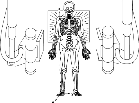 Reference position. The global coordinate system is fixed to the cage (illustrated here at floor level). At the reference examination the two body-fixed coordinate systems (one scapular one humeral) are aligned to the cage system.