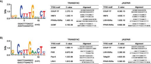 Figure 6:Int... Reverse Complement Oligo