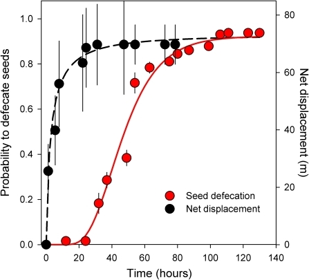 Cumulative frequency of defecation of Ephedra seeds ingested by lizards over time (i.e., proportion of ingested seeds defecated during such time interval; left axis), and net displacement (i.e., maximum net distance from the last relocation to the release location) of radio-tagged lizards over time (right axis).Lines represent accumulative log-normal fits. Symbols represent daily averages (±SE) each two hours of both variables (see material & methods); note, however, that fits were based on all measured values (not shown for clarity).