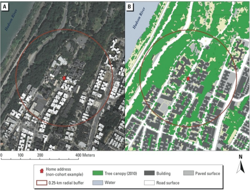 Circular buffer with tree canopy coverage shown using (A) orthophotography and (B) & Circular buffer with tree canopy coverage shown using ( | Open-i