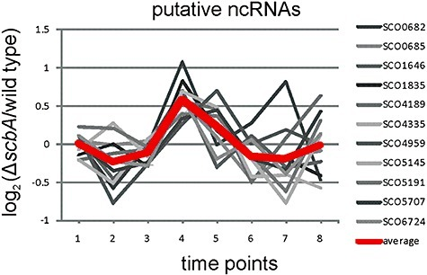 Expression profiles of putative ncRNAs. The fold change between the ΔscbA mutant and M145 of expression profiles of 11 genes (indicated at the side) overlapping putative ncRNAs are plotted. The average is emphasized by a thick red line. A list of the genes and their expression data is included in Table S3.