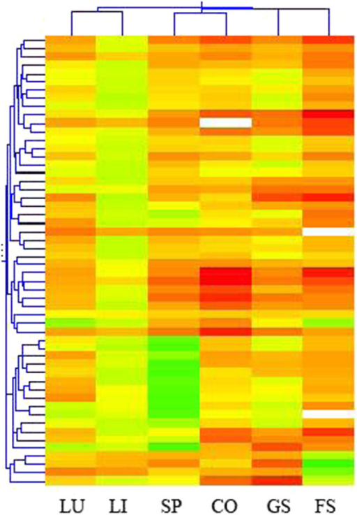 Hierarchical cluster analysis(HCA)of 54 mouse miRNAs in 6 mouse organs. The female mice received 5 daily doses of 125 mg/kg b.wt/day of BaP by oral gavage. 6 organs were unsupervised clustered with Pearson's correlation analysis. The results show tissue specific expression patterns (LU-lung, LI-liver, SP-spleen, CO-colon, GS-glandular stomach, FS-forestomach).