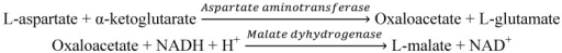 Reaction mechanism for the spectrophotometric assays of aspartate aminotransferase (AST).