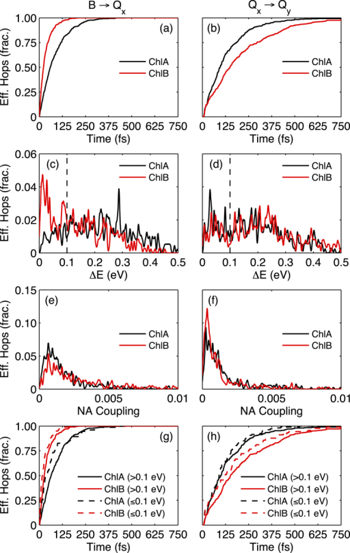 Excited state potential energy surface (PES) events during 1 ps NA-ESMD simulations of ChlA (black) and ChlB (red).Times of effective (a) B → Qx and (b) Qx → Qy hops, energy gaps (ΔE) between (c) B and Qx, and (d) Qx and Qy excited states during effective hops, frequency of nonadiabatic coupling magnitude during effective (e) B → Qx and (f) Qx → Qy hops, and times of effective hops with ΔE > 0.1 eV (solid) and ΔE ≤ 0.1 eV (dashed) for (g) B → Qx and (h) Qx → Qy. In (a,b,g,h), t = 0 refers to the moment the donor excited state (B – (a) and (g), Qx – (b) and (h)) is initially populated on each trajectory.
