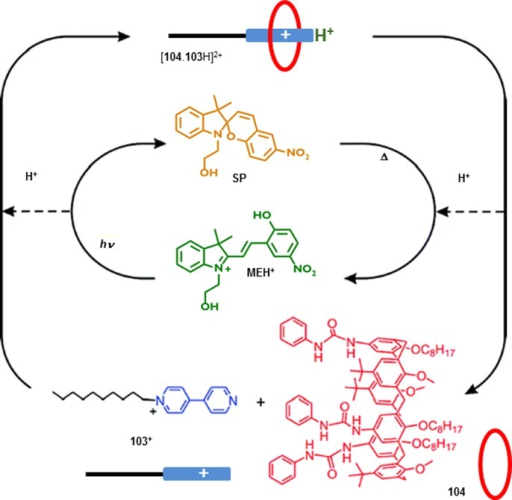 Communication betweenmolecular devices. Acid generated upon conversionof merocyanine (MEH+) to spiropyran (SP) protonates a pyridine,and leads to subsequent complexation of the pyridinium ion (103+) by a calix[6]arene (104).1246