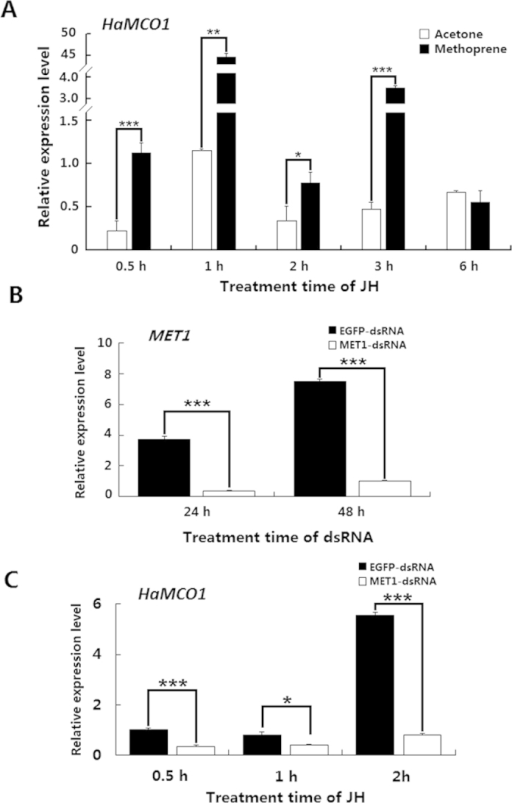 Regulation by JH of HaMCO1 transcript expression.(A) The effect of JH treatment on the expression of HaMCO1 transcript. (B) qPCR analysis of MET dsRNAi efficiency on the MET transcript level. (C) The effect of MET knockdown on HaMCO1 transcript levels. The 18S rRNA was used as the housekeeping gene for normalization in all qPCR analyses. The data represent the mean ± SD of three biological replicates. The significance of comparisons were determined by Student's t-test (*p < 0.05, **p < 0.01, ***p < 0.001).