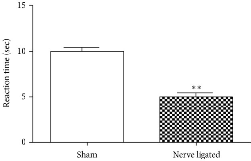 Changes in reaction time in sham-operated and nerve ligated mice, 14 days after the sciatic nerve ligation. ∗∗∗P < 0.001 significantly different from the control (sham) treated animals. Each value represents the mean ± SEM (n = 8).