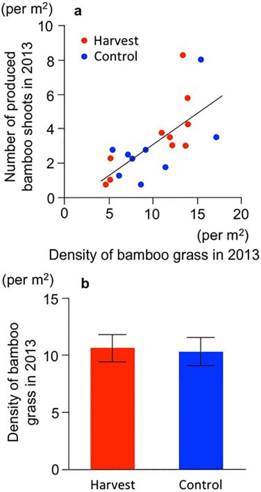 Initial status of bamboo grass in the year the experiment was started (2013).(a) Relationship between the density of the matured bamboo grass and the bamboo shoot productivity. Red circles: harvest. Blue circles: control. Solid line indicates the linear regression between the density of matured bamboo grass and bamboo shoots. (b) Density of matured bamboo grass. Bars: SE values.
