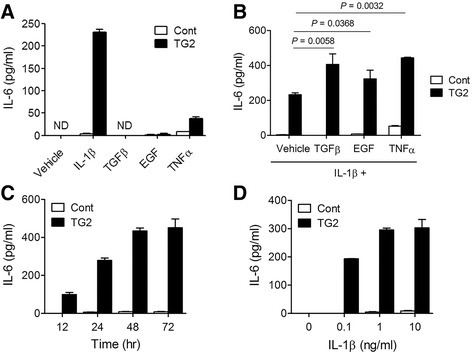 IL-1β induced IL-6 production from breast cancer cells in a TG2-dependent manner. a TG2-overexpressing MCF7 cells (TG2) and control vector-transfected MCF-7 cells (Cont) were treated with various cytokines (10 ng/ml) for 48 h and IL-6 levels in culture supernatants were measured by ELISA. b Cells were treated with IL-1β (10 ng/ml) in the presence of TGFβ (10 ng/ml), EGF (10 ng/ml), or TNFα (10 ng/ml) for 48 h and secreted IL-6 levels in culture supernatants were measured by ELISA. c Cells were treated with IL-1β (10 ng/ml) for the indicated times. d Cells were treated with IL-1β at various concentrations for 48 h. a-d All data shown are representative of three independent experiments. Data are presented as mean ± SD
