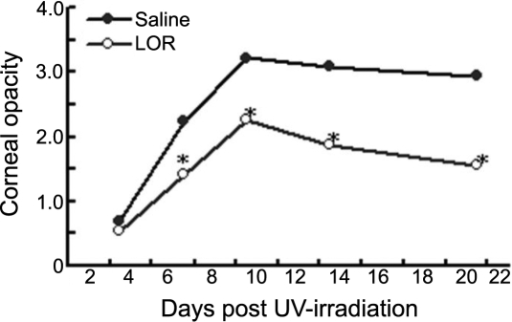 Lornoxicam treatment decreases the severity of recurrent herpetic stromal keratitis. Latently infected mice were consecutively treated with 0.4 mg/kg of lornoxicam (LOR) or an equal volume of saline on one day before UVB exposure and repeated on the following six days post-UVB exposure. The mean score of corneal opacity in LOR-treated mice (HSK+LOR) was significantly lower than that in the saline control mice (HSK), reaching significance on days 7 to day 21 (p=0.09). The asterisk indicates that p<0.001 when compared to the HSK group at the corresponding time points.