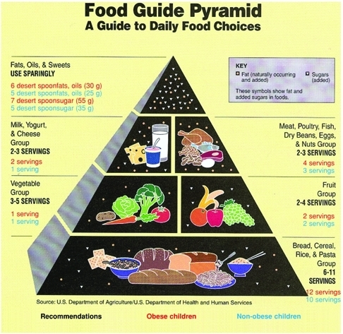 the five major food groups Prior to the development of myplate, when the food groups were displayed in pyramid form, oils held the smallest space at the top myplate has eliminated oil as a food group today the usda recognizes just five food groups, recommending fats, oils and sweets be eaten only rarely.
