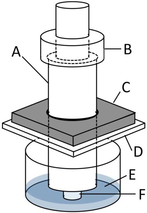 Loading apparatus to apply sustained compressive loading to cells seeded-collagen sponge.In this representation A indicates an indenter (diameter: 10 mm), B the weights, C a stainless steel plate (thick: 5 mm), D a 12-well plate lid, E culture medium, and F a fibroblast-seeded collagen sponge sample (diameter: 5 mm and thick: 3 mm).
