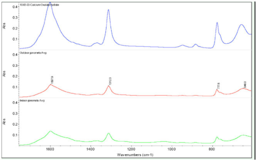 FTIR spectra of pure calcium oxalate (blue), outdoor-reared (red) and indoor-reared G. postica (green) outer cocoon shell surface. High quality figures are available online.
