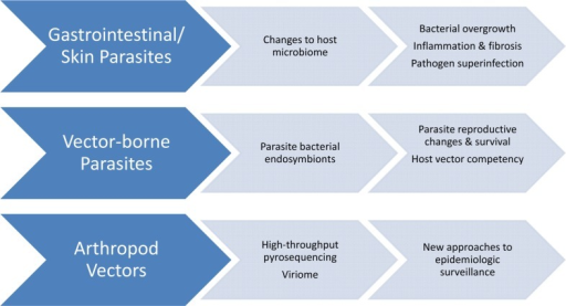 Neglected tropical diseases (NTDs) and the microbiome.