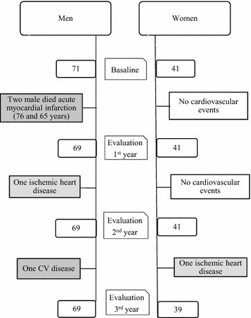 Study flow chart. The subjects analyzed each year are presented in the flow chart. Additional information includes cardiovascular events in each group and evaluation of patients by gender