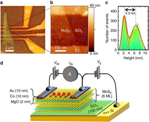 Multilayer MoS2-based lateral spin-valve device.(a) Optical image of the device with the multilayer MoS2 flake on 100 nm SiO2/Si(n++) substrate, the E1, E2, E3 and E4 indicate the four Au/Co/MgO electrodes. (b,c) AFM measurement (in tapping mode) focused on the MoS2 channel between E1 and E2 electrodes. The thickness of MoS2 is determined by the Gaussian distribution of pixel height in the square region in b. (d) Schematics of the lateral spin-valve device. The multilayer MoS2 serves as a spin transport channel, and two Au/Co/MgO electrodes are used to inject spin (Vds) and measure the current (Ids). A back-gate voltage (Vg) between the substrate and one top contact is used to modulate the carrier density in the MoS2 channel.