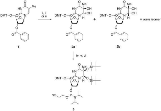 Ch3 Lewis Dot Structure: Sch1:Preferential Formation Of (5S,6R)-thymine Glycol For
