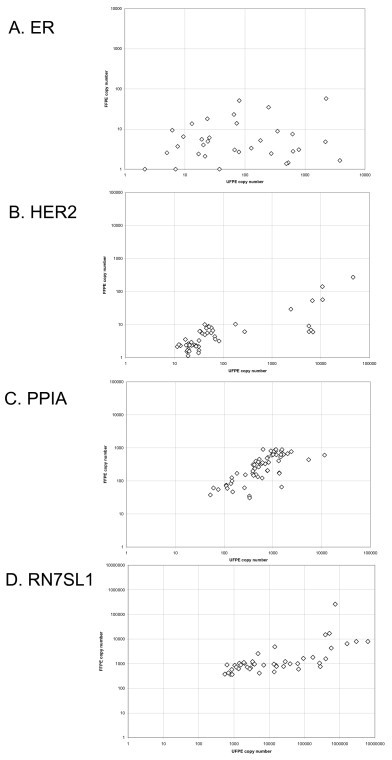 Scatter plot (logarithmic scale) of transcript copy number data for ER (A), HER2 (B), Cyclophilin A (PPIA) (C) and RN7SL1 (D).