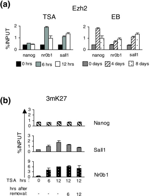 Ezh2 and H3K27 trimethylation levels on the promoters of Nanog, Sall1 and Nr0b1. (a) ChIP assays using an anti-Ezh2 antibody on the promoters of Nanog, Sall1 and Nr0b1 during TSA treatment (6 and 12 h) and EB formation (4 and 8 days). (b) ChIP assays using an anti-3mK27 antibody were performed for the promoters of TSA down-regulated genes Nanog, Sall1 and Nr0b1 after 6 and 12 h of TSA treatment and further cultivation without TSA for an additional 6 and 12 h.