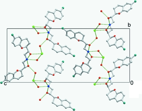 View of the layers array of (I), formed via hydrogen-bonding interactions (indicated by green lines).