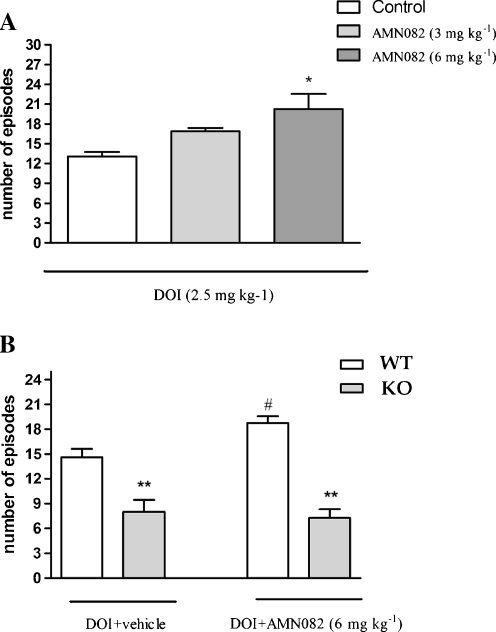 The effect of AMN082 on DOI-induced head twitches in mice (a) and the effect of DOI on the mGlu7 KO C57Bl/6J mice during a 20-min session and the lack of AMN082 effect after administration to mGlu7 KO animals (b). AMN082 was given in the dose of 6 mg kg−1, 60 min before DOI administration. Values represent the mean number of head twitches ±SEM. **p < 0.01 and *p < 0.05 vs. DOI-treated group, #p < 0.01 vs. WT animals