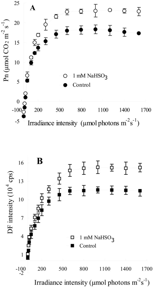 Light response curves of Pn (A) and DF intensity (B) of leaves of soybean (Glycine max Zaoshu No. 18) seedlings exposed to 1mM NaHSO3 concentration for 72 h. In the figure each value is the mean ± S.E. of nine independent leaves.