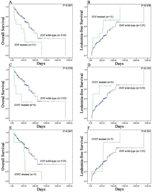 Kaplan–Meier survival curves for survival of MDS patients.(A) Overall survival data for MDS patients stratified by IDH1/2 mutational status. (B) Leukemia-free survival data for MDS patients stratified by IDH1/2 mutational status. (C) Overall survival data for MDS patients stratified by IDH1 mutational status. (D) Leukemia-free survival data for MDS patients stratified by IDH1 mutational status. (E) Overall survival data for MDS patients stratified by IDH2 mutational status. (F) Leukemia-free survival data for MDS patients stratified by IDH2 mutational status.