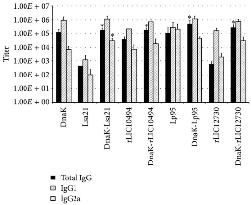 Analysis of IgG isotype profile in serum of mice immunized with the recombinant proteins. Sera from BALB/c mice immunized with the recombinant proteins alone or in fusion with DnaK were analyzed by ELISA. IgG, IgG1, and IgG2a titers were evaluated in each case. Sera from PBS injected mice were employed as negative control. Statistical analyses were performed by two-tailed t-test, comparing the titer obtained with leptospiral surface protein alone with the corresponding DnaK fusion protein.